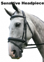 Sabre Cordoba Sensitive Round Raised Snaffle Bridle English & Flash (Klassic/Crank) Noseband